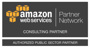 Public_Sector_Consulting-Partner_Dark_Large